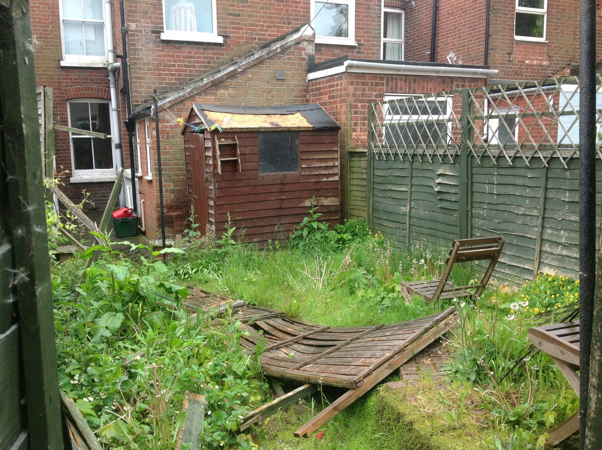 garden fence replacement.